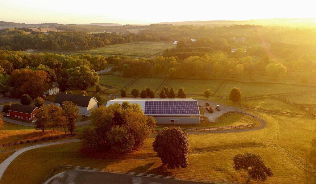 solar farm, solar, energy